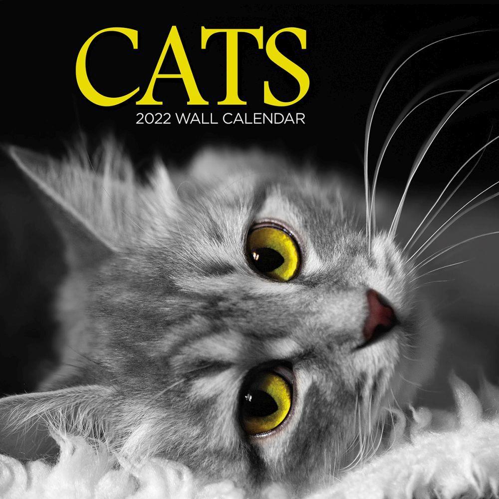 Cats 2022 Wall Calendar