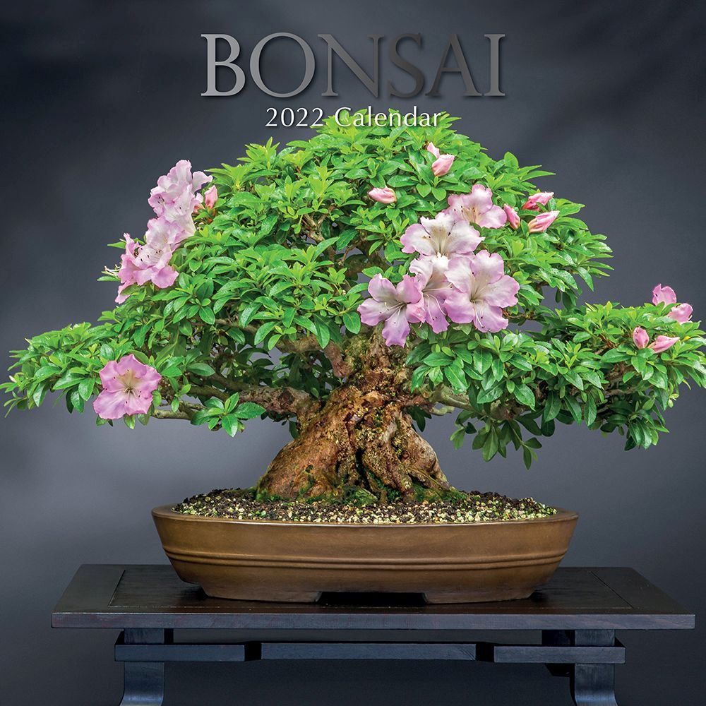 Bonsai 2022 Wall Calendar