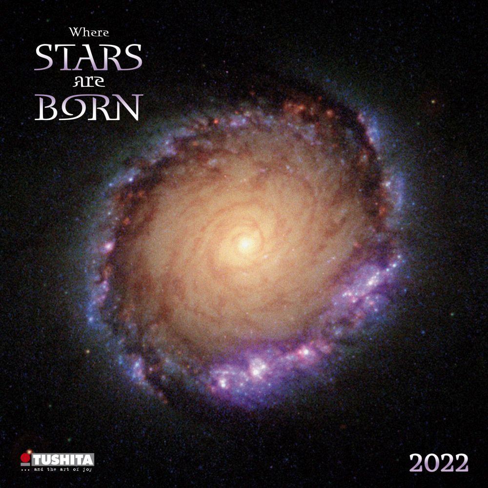 Star is Born 2022 Poster Calendar