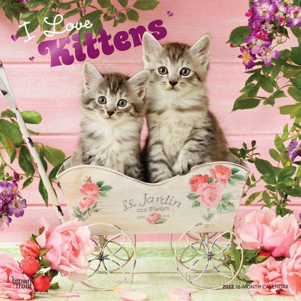 I Love Kittens 2022 Wall Calendar