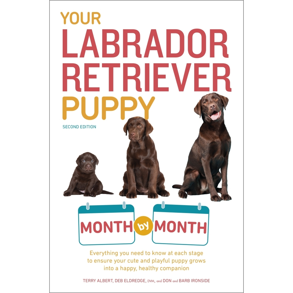 Your-Labrador-Retriever-Puppy-Book-1