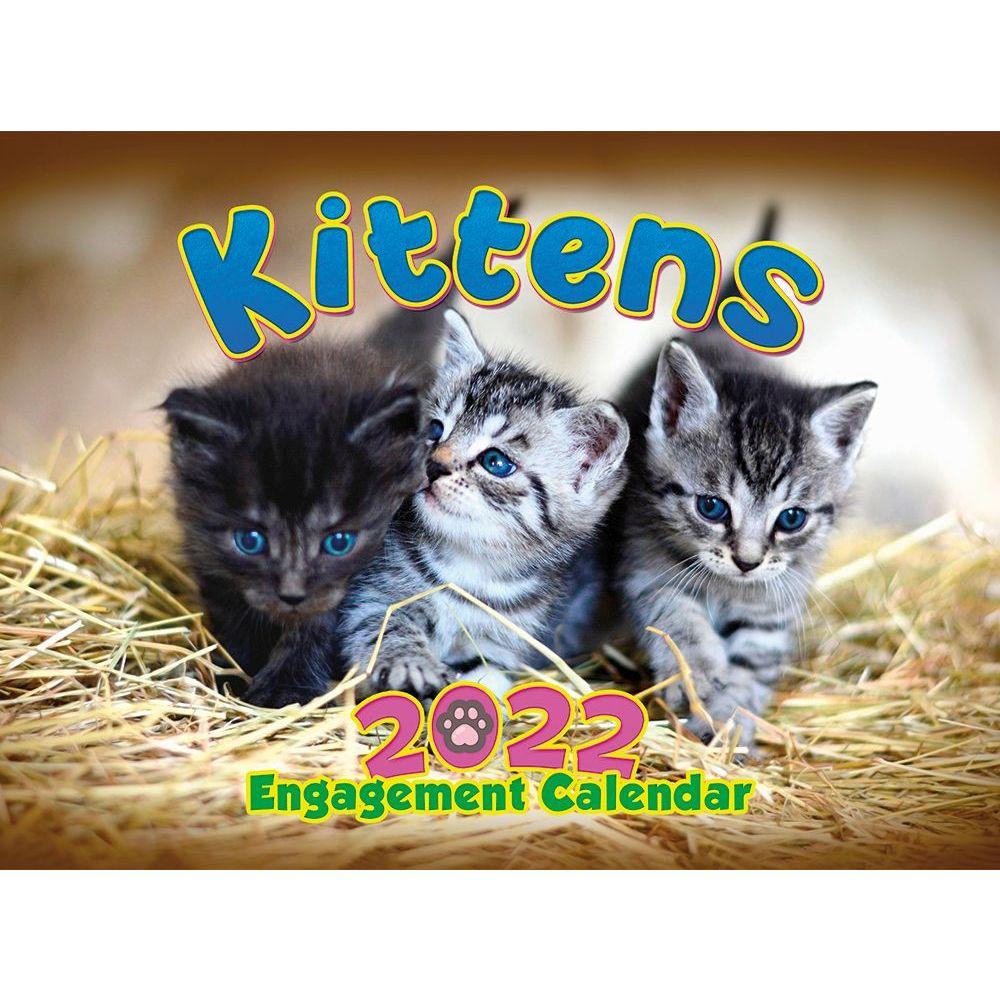 Kittens 2022 Wall Calendar