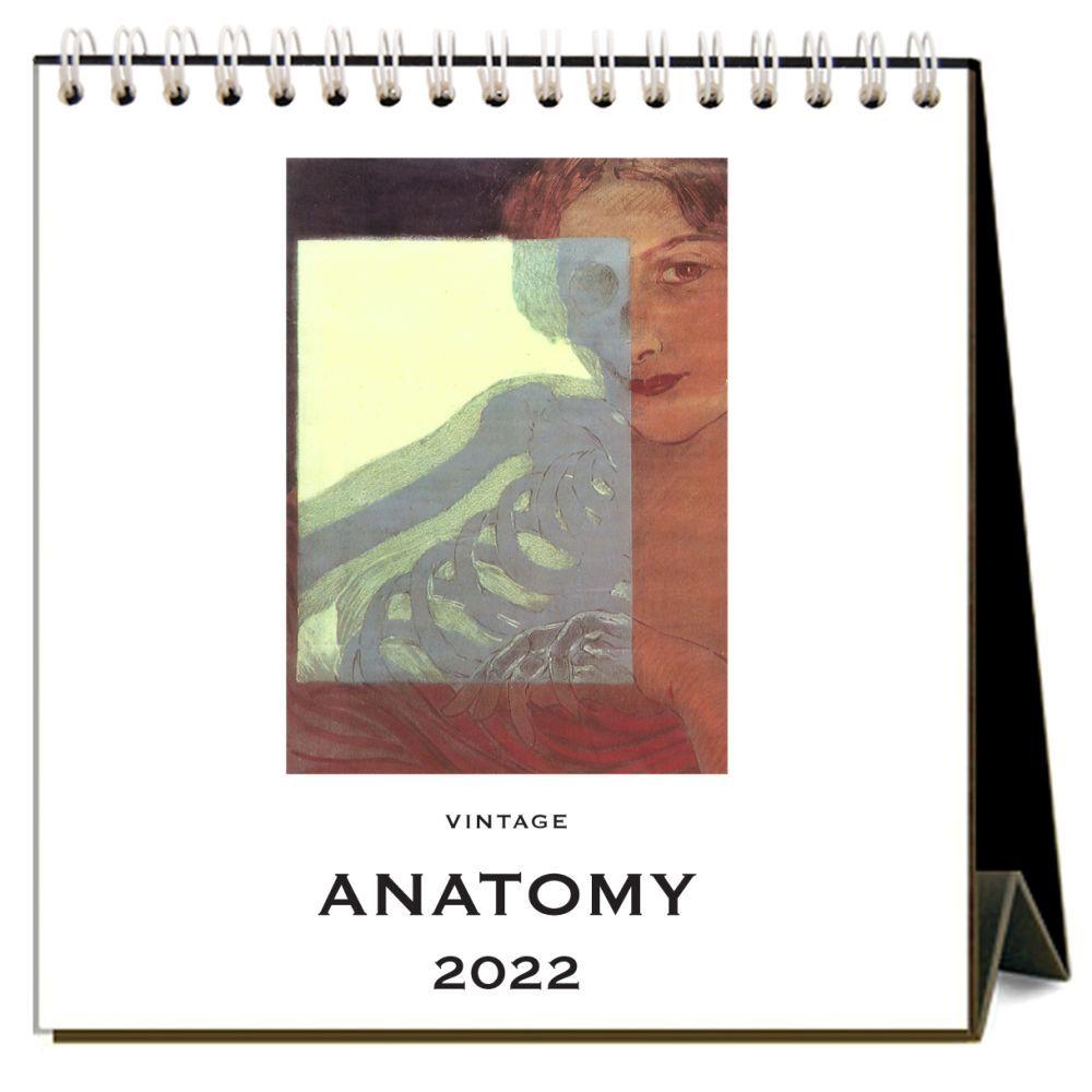 Anatomy 2022 Desk Calendar
