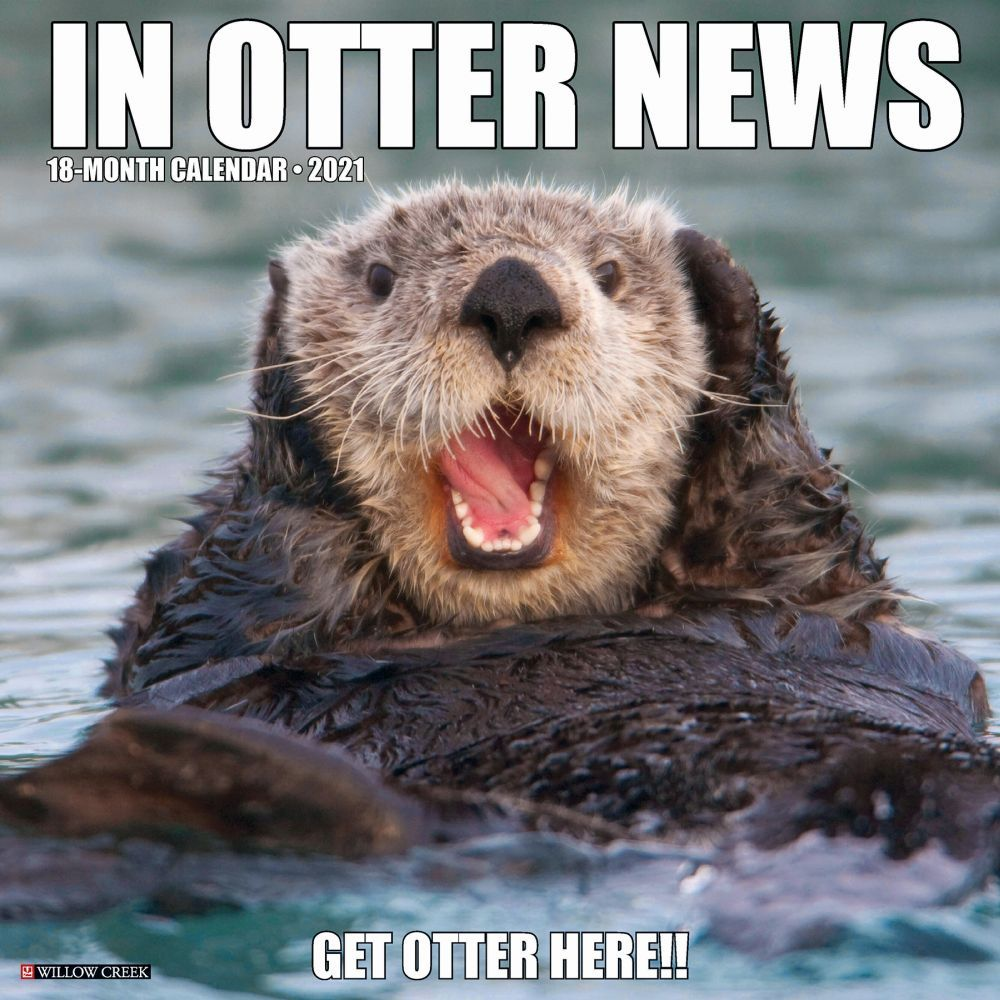 In Otter News 2021 Wall Calendar