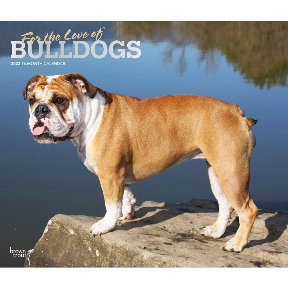 Bulldogs 2022 Deluxe Wall Calendar