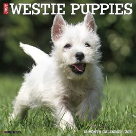 Just Westie Puppies Wall Calendar