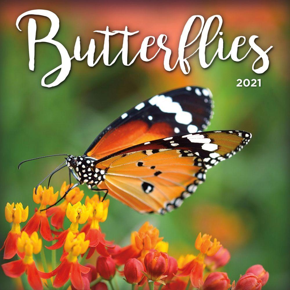 Butterflies 2021 Wall Calendar