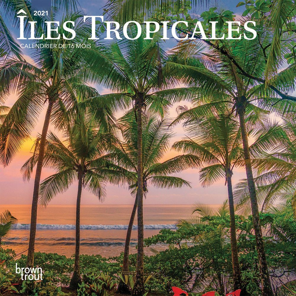 2021 lles Tropicales Mini Wall Calendar (French)