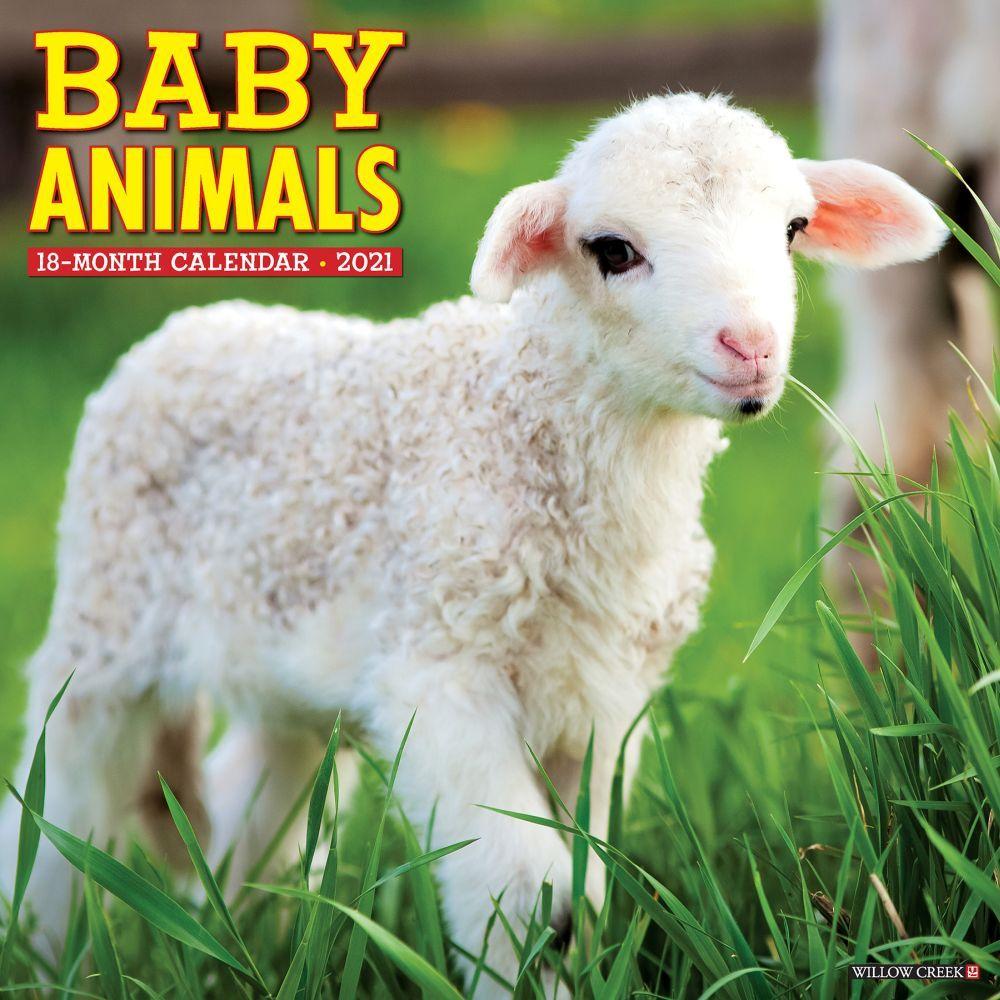 2021 Baby Animals Wall Calendar