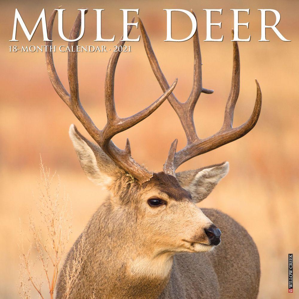 2021 Mule Deer Wall Calendar