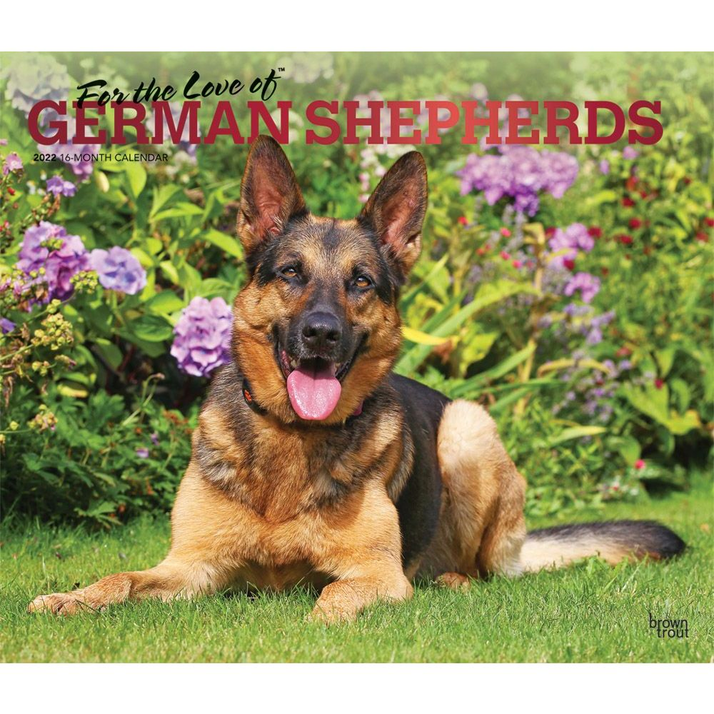 German-Shepherds-2022-Deluxe-Wall-Calendar-image-main