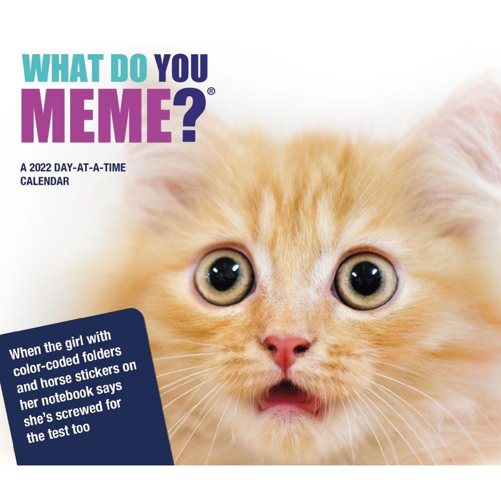 Meme Calendar 2022.What Do You Meme 2022 Desk Calendar Calendars Com
