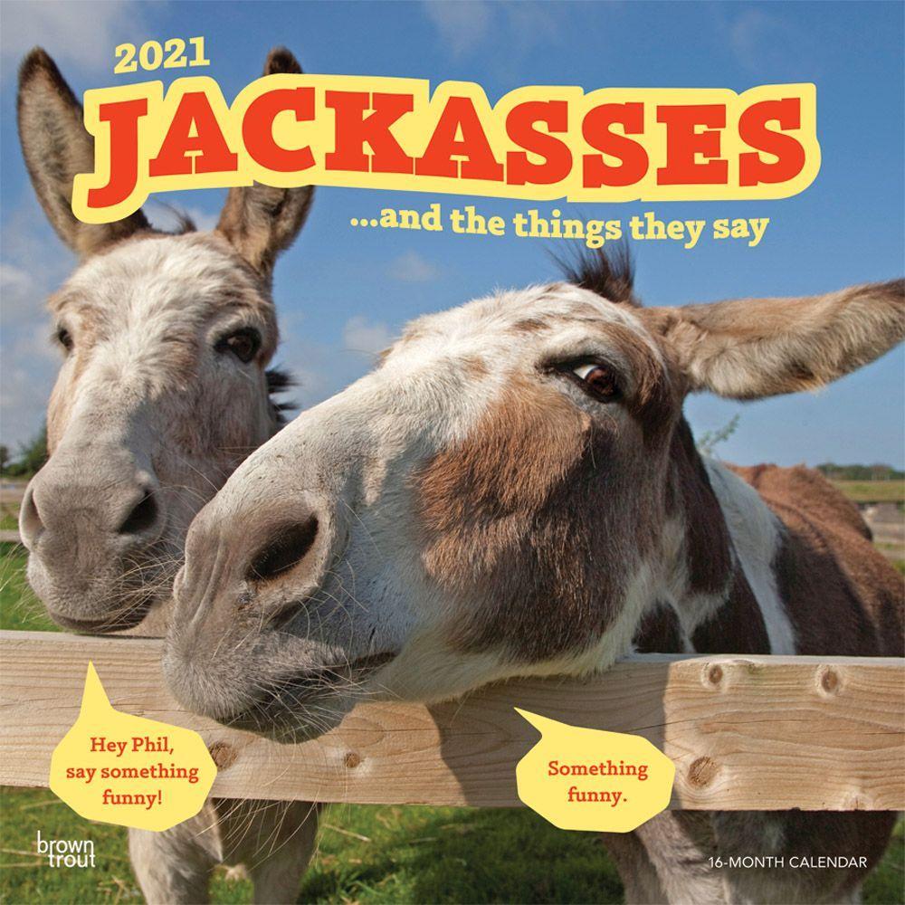 Jackasses 2021 Wall Calendar