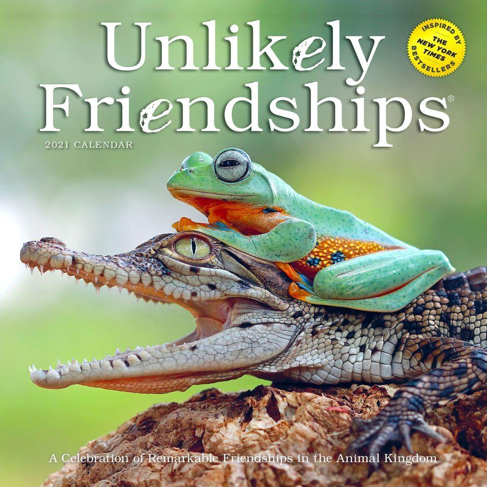 2021 Unlikely Friendships Wall Calendar