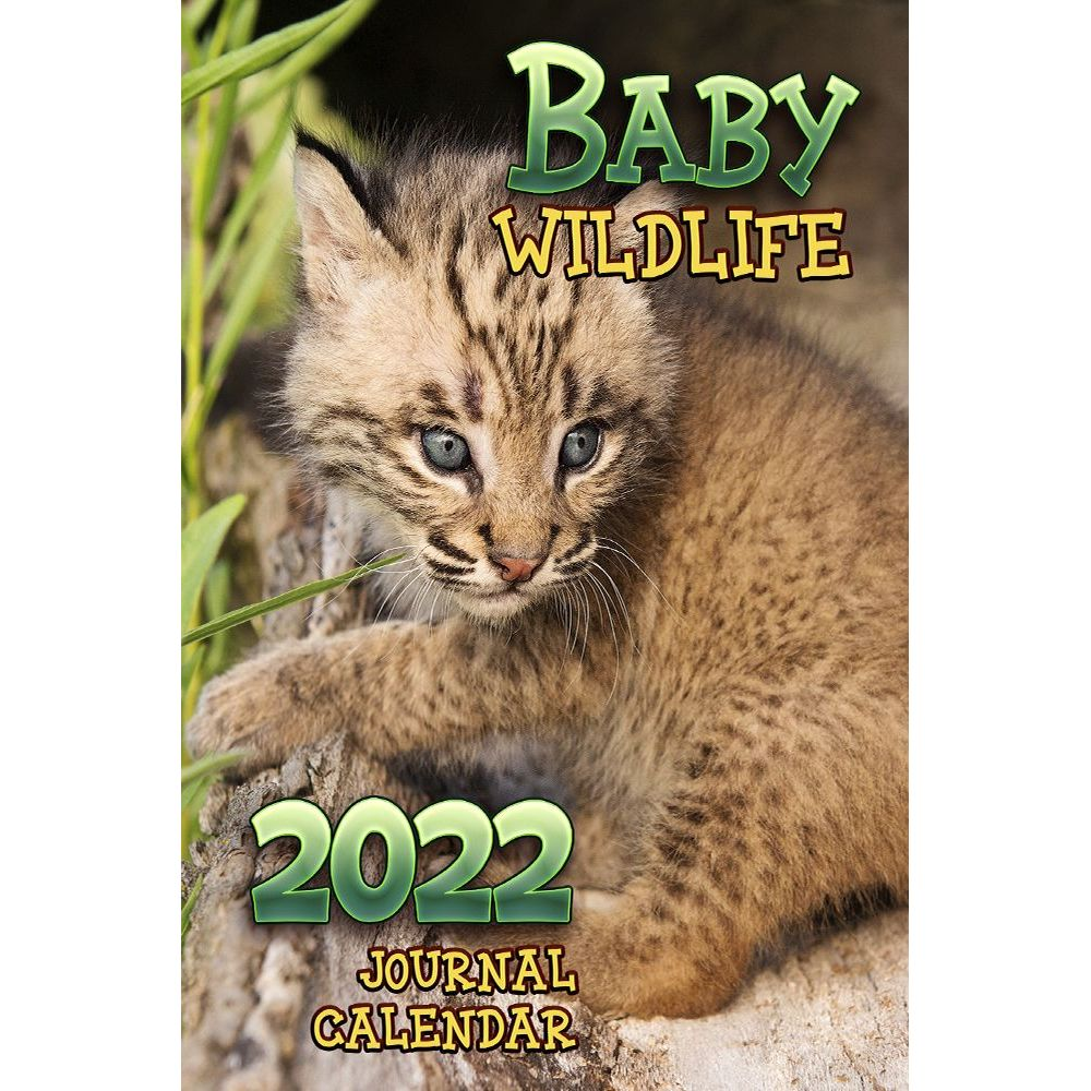 Baby Wildlife 2022 Engagement