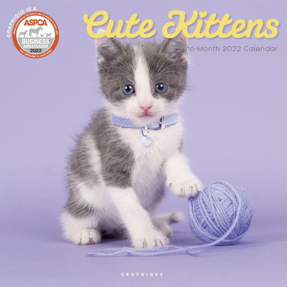 Cute Kittens ASPCA 2022 Wall Calendar