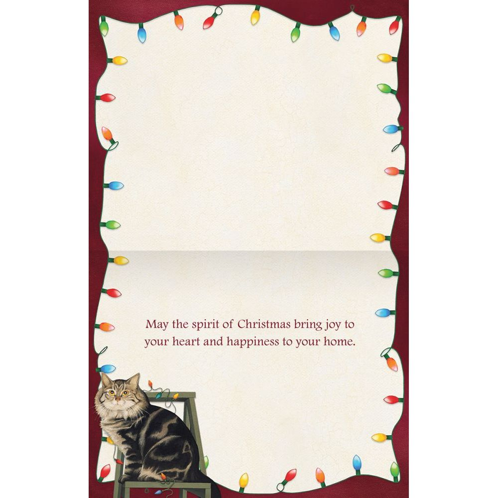 Stringing-Lights-Boxed-Christmas-Cards-2
