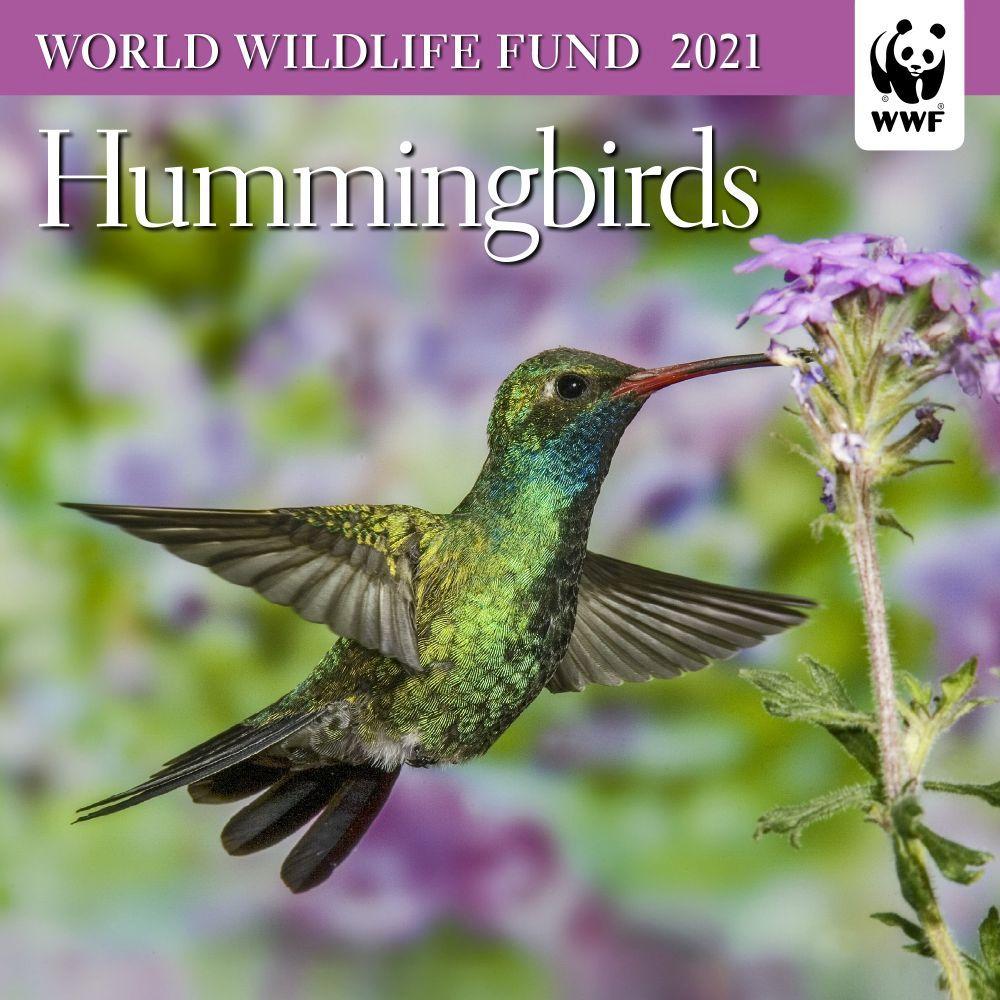 Hummingbirds WWF 2021 Mini Wall Calendar