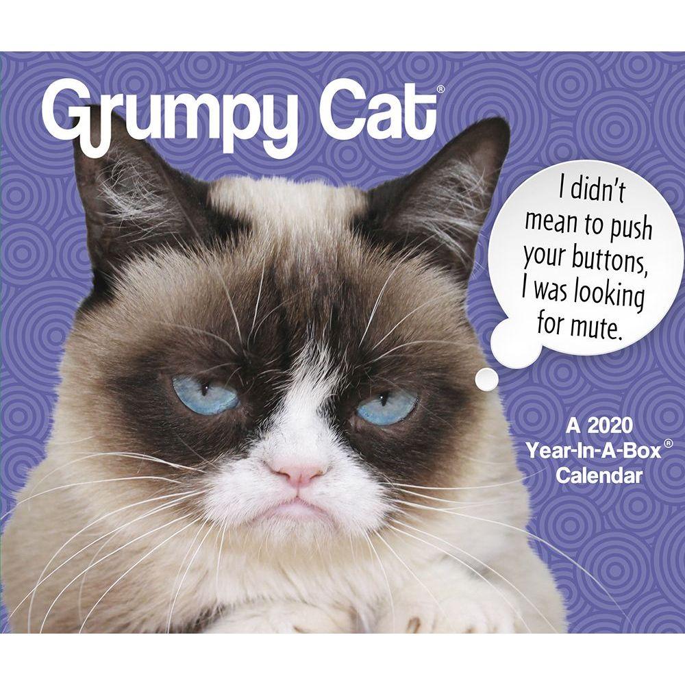 Grumpy Cat 2021 Desk Calendar