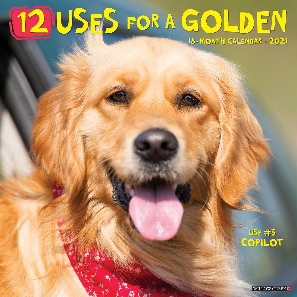 12 Uses for a Golden 2021 Wall Calendar
