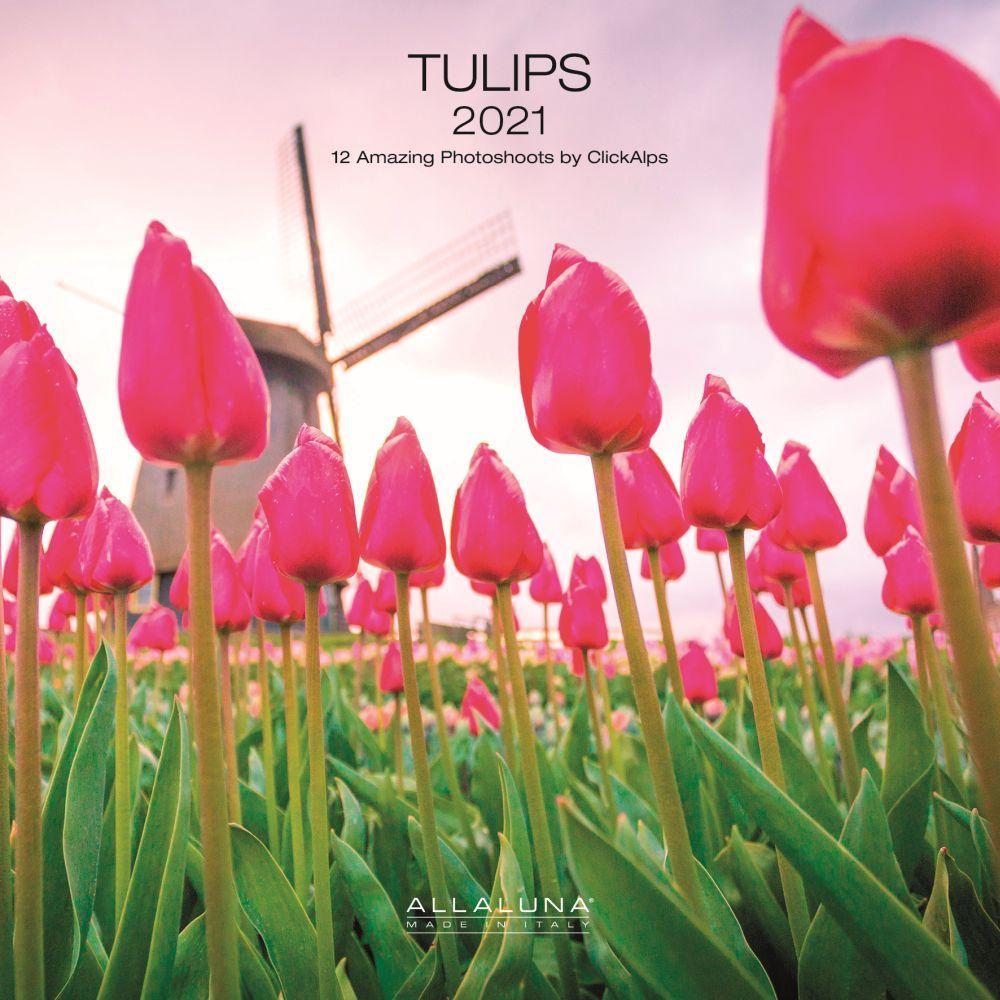 2021 Tulips Alla Luna Wall Calendar