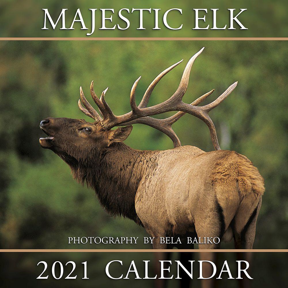 2021 Majestic Elk Wall Calendar