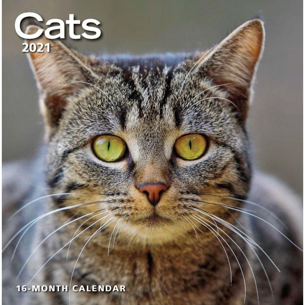 Cats 2021 Wall Calendar