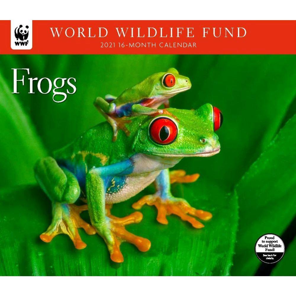 Frogs WWF 2021 Wall Calendar