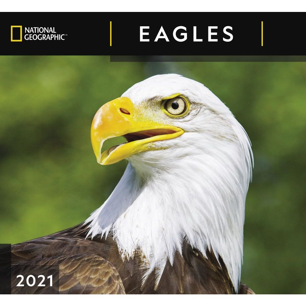 Eagles National Geographic 2021 Wall Calendar