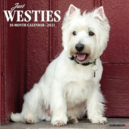 Just Westies Wall Calendar