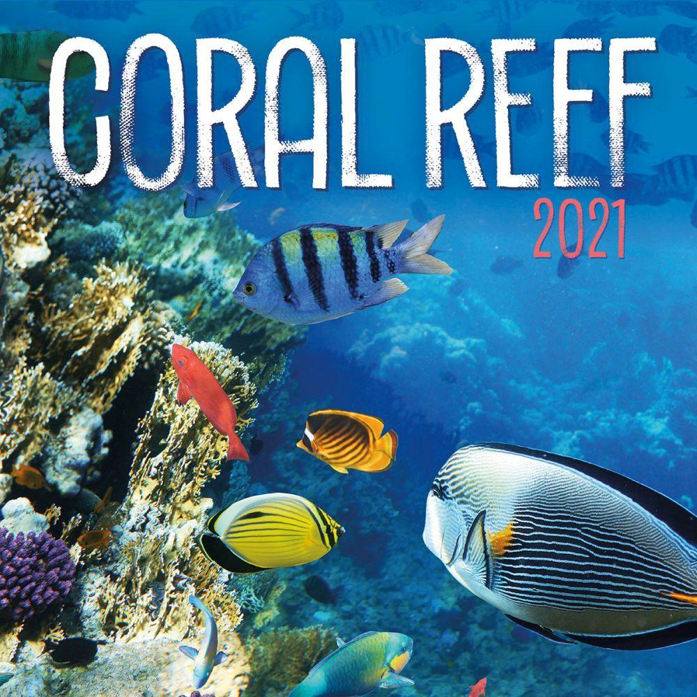 Coral Reef 2021 Wall Calendar