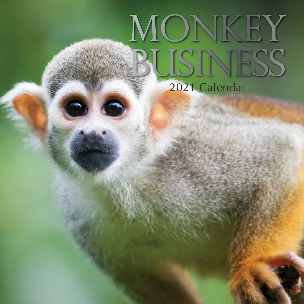 Monkey Business 2021 Wall Calendar