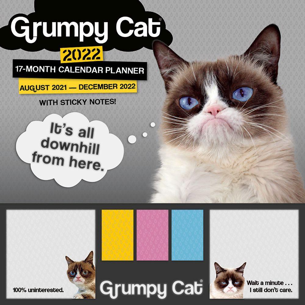 Grumpy Cat Calendar 2022.Grumpy Cat Sticky Note 2022 Calendar Planner Calendars Com
