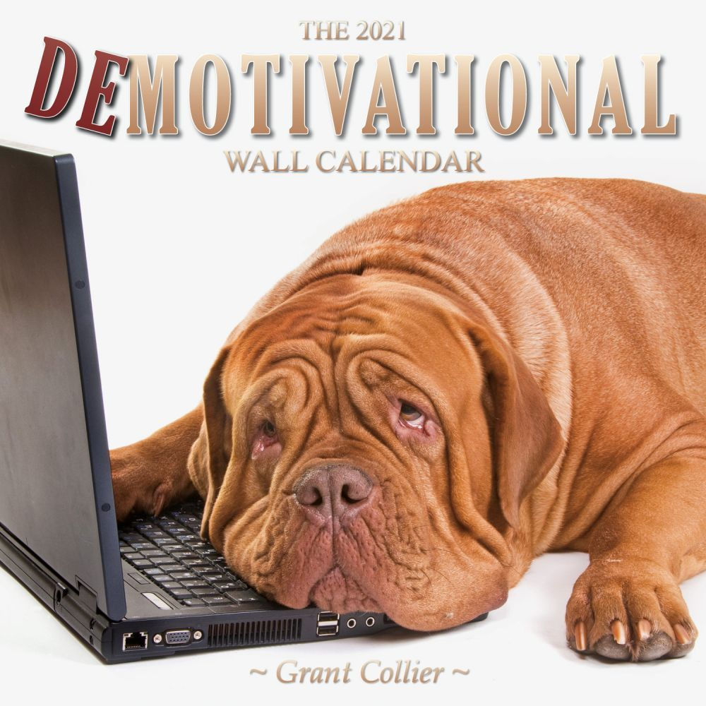 2021 Demotivational Wall Calendar