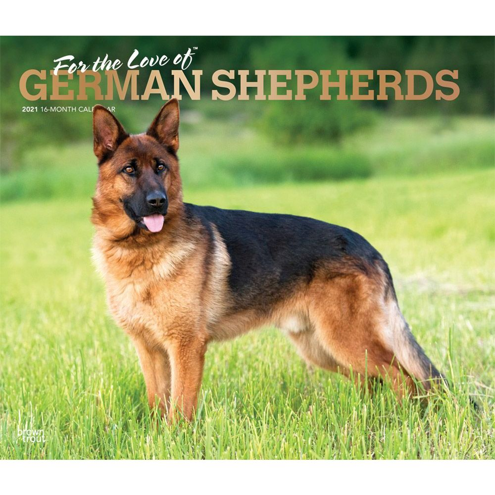 German Shepherds 2021 Deluxe Wall Calendar