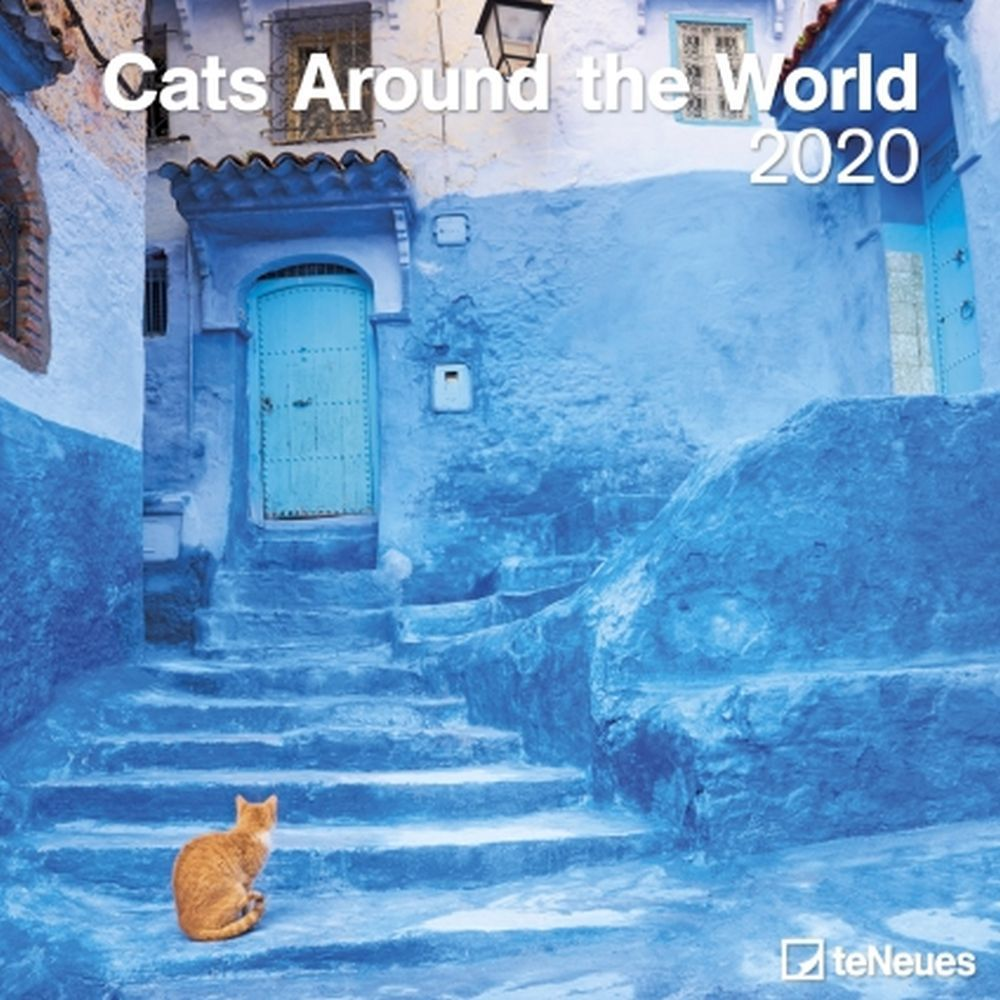 Cats-Around-The-World-Wall-Calendar-1