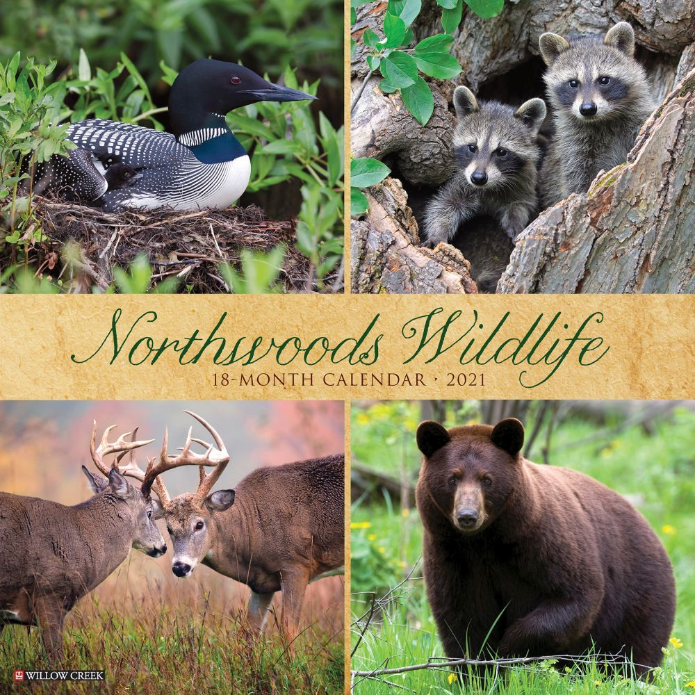 Northwoods Wildlife 2021 Wall Calendar