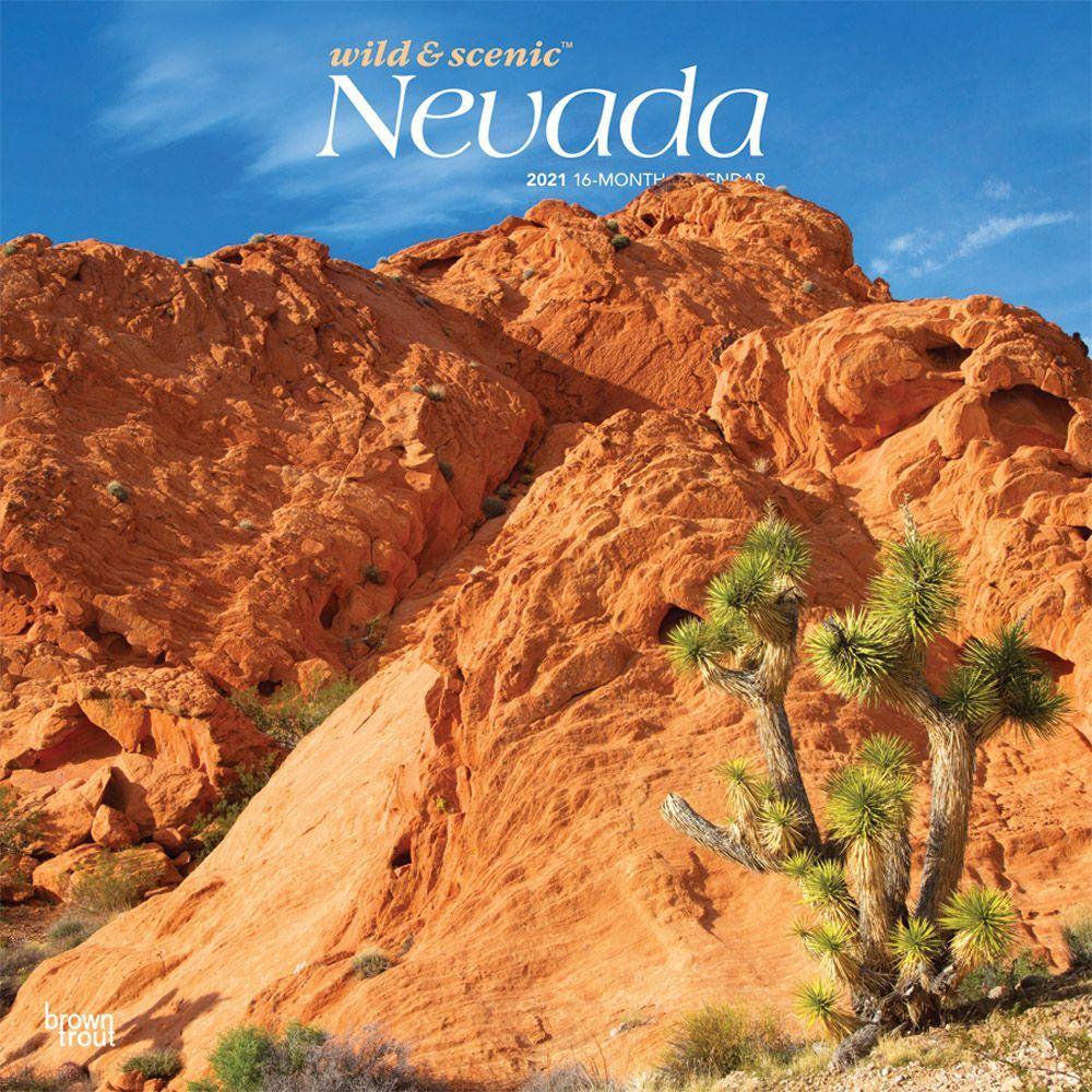 Nevada Wild & Scenic Wall Calendar