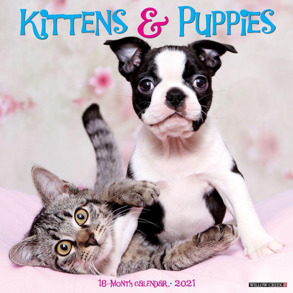 Kittens & Puppies 2021 Wall Calendar