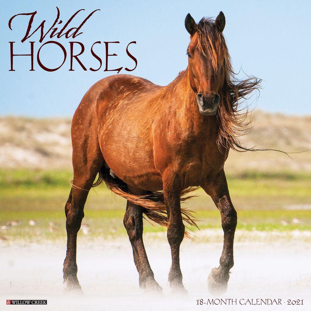 Wild Horses 2021 Wall Calendar