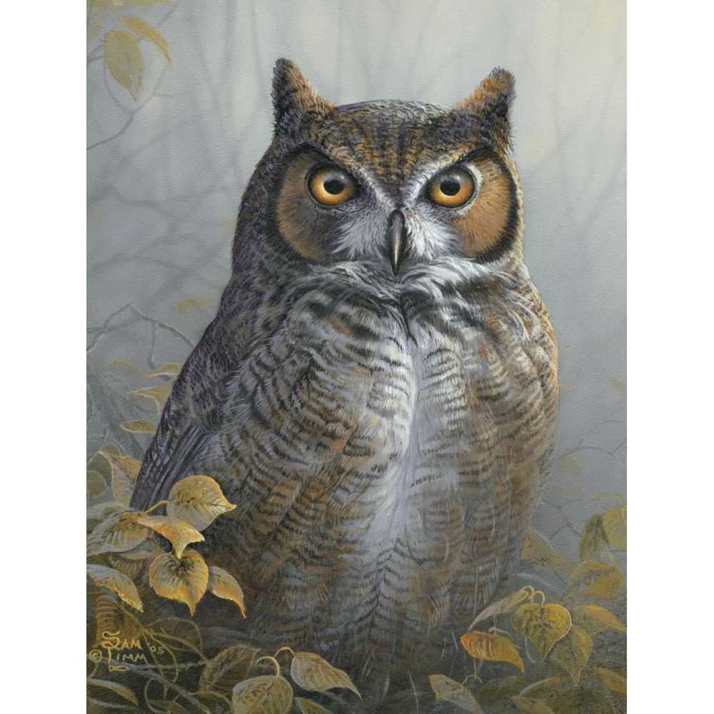 Best Watchful Eye 1000pc Puzzle You Can Buy