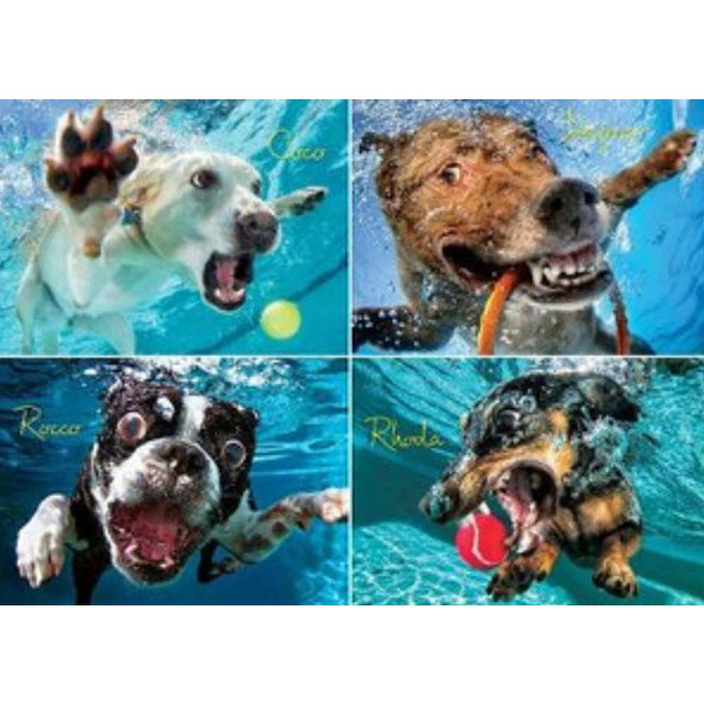 Best Underwater Dogs Pool Pawty 1000 Piece Puzzle You Can Buy