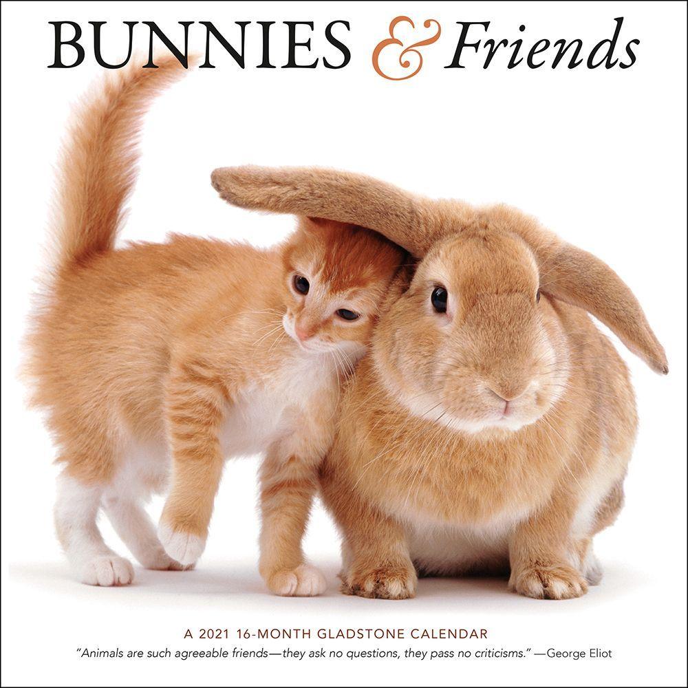 2021 Bunnies and Friends Wall Calendar
