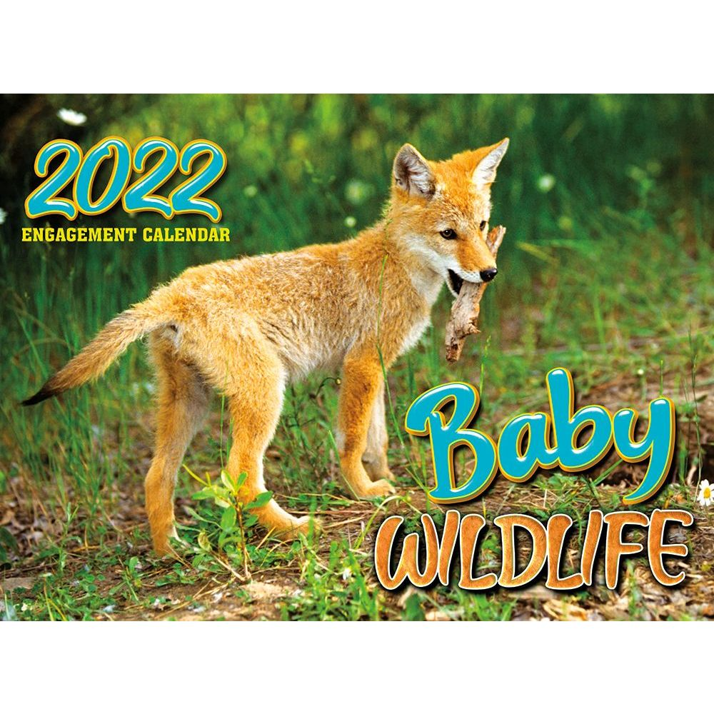 Baby Wildlife 2022 Wall Calendar