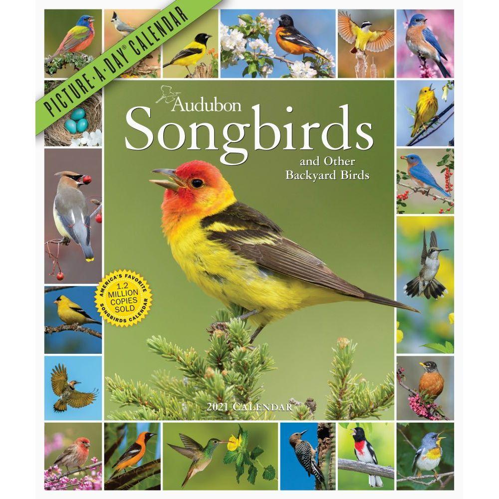 2021 365 Audubon Songbirds Wall Calendar
