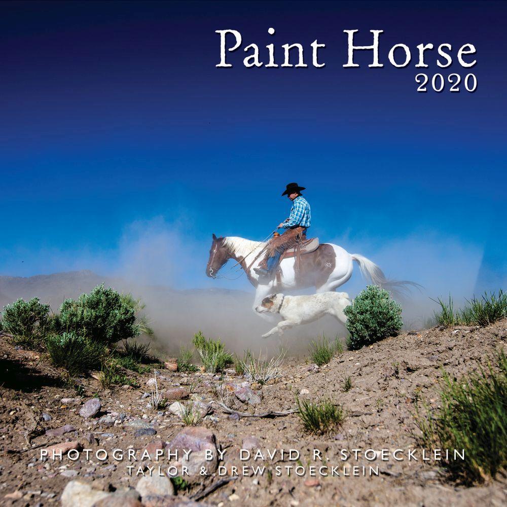 Calendar   Horse   Paint   2020   Wall