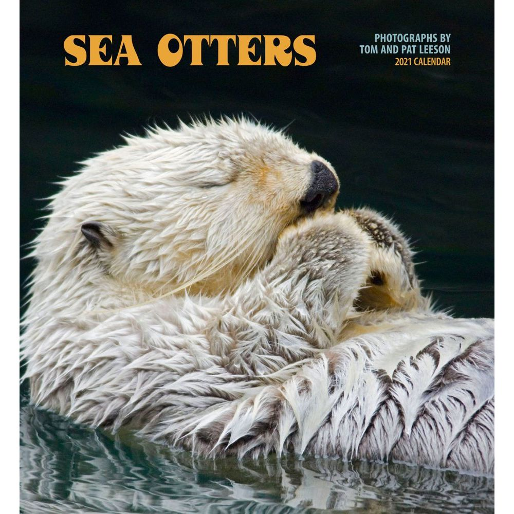 Sea Otters 2021 Wall Calendar