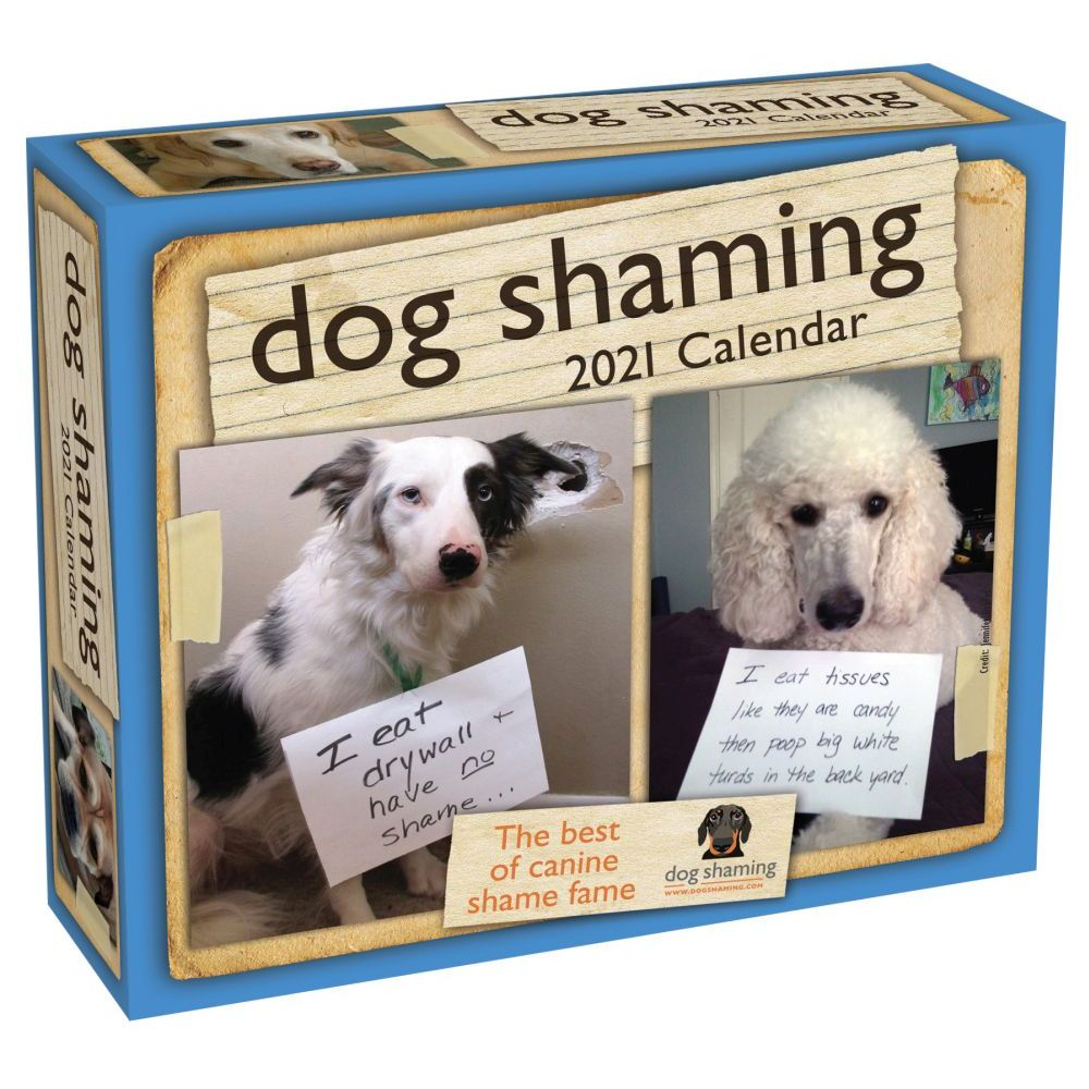 Calendar   Desk   Dog