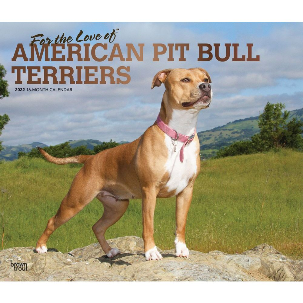 Pit Bull Terriers 2022 Deluxe Wall Calendar