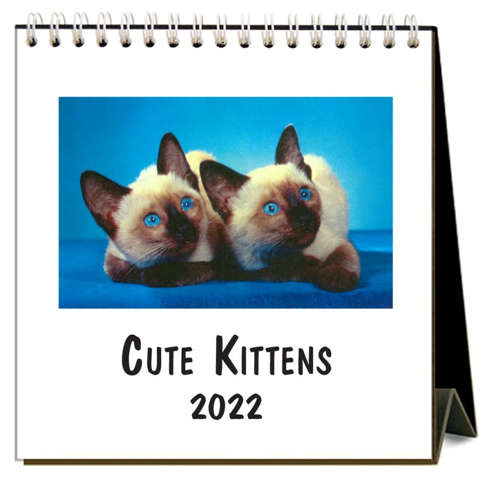 Cute Kittens 2022 Desk Calendar